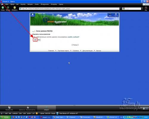Подтверждение удаления пользователя в cPanel